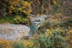 Autumn Blue Stream in orizzontale Fotografia Stock Libera da Diritti