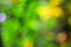 Autumn blur Royalty Free Stock Photo
