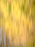 Autumn Blur - Yellows, with hints of Brown, Red & Green. Blur of natural leaf colors in the Fall, with mostly yellow, and a bit of brown, red and green. Suitable royalty free stock image