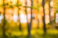 Autumn blurred background of unfocused trees on the background of the river in bright warm colors_. Autumn blurred background of unfocused trees on the royalty free stock photography