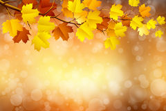 Autumn in blurry circle glowing bokeh background Stock Photos