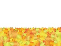 Autumn board background Royalty Free Stock Photography