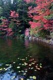 Autumn Boathouse op het Meer royalty-vrije stock foto