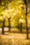 Autumn bokeh Royalty Free Stock Photography