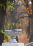 Autumn bokeh 16. Botanic park near Vladivostok. Russia. Far-East royalty free stock image