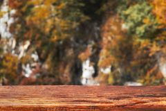 Autumn bokeh background with wooden plank in focus. Blurred fall nature with brown table. Autumn bokeh background with wooden plank in focus. Blurred fall nature royalty free stock image