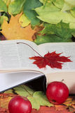 Autumn, the book, apples. The book with a red maple leaf and apples removed close up on autumn foliage Stock Photo