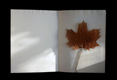 Autumn book with maple-leaf Stock Images