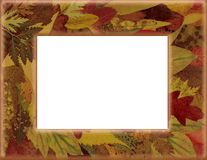 Autumn border Stock Photo