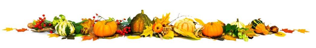 Free Autumn Border Stock Photo - 33515210