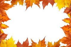 Free Autumn Border Stock Photos - 6948433