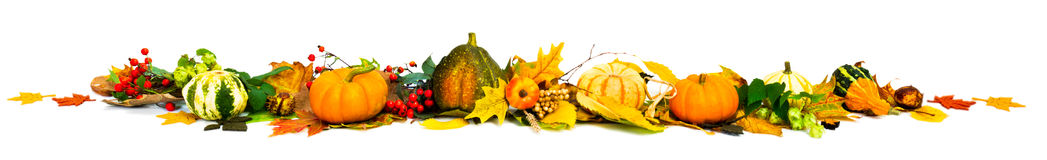 Autumn border. Assembled from pumpkins, leaves and berries on white background Stock Photo
