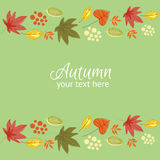 Autumn border card green Royalty Free Stock Images