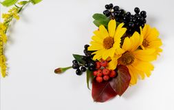 Autumn border. Composition of vibrant red and yellow leaves on a white background. Flat lay top view trendy background. Autumn border. Composition of vibrant Stock Photo
