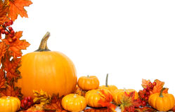 Autumn border Royalty Free Stock Photo