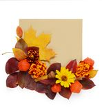 Autumn border. Creative Composition of vibrant red and yellow leaves and card for text on a white background. Flat lay. Autumn border. Composition of vibrant red Royalty Free Stock Images