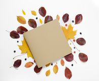 Autumn border. Creative Composition of vibrant red and yellow leaves and card for text on a white background. Flat lay. Autumn border. Composition of vibrant red Stock Photography