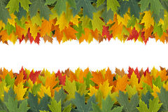 Autumn Border Design Royalty Free Stock Photo