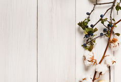 Autumn border of dried flowers on white wood, background. Autumn composition background. Border made of dried fall flowers, branches and autumn leaves, cotton Royalty Free Stock Photography