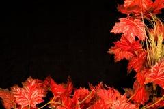 Autumn Border II Stock Images