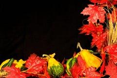 Autumn Border III. Centerpiece of autumn items on background of black micro velvet Stock Image