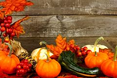 Autumn border of leaves, pumpkins and vegetables on wood Royalty Free Stock Images
