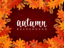 Autumn border with oak leaves and acorns. Vector illustration royalty free illustration