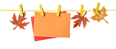 Autumn border with paper cards and marple leaves on white. Autumn border with two paper cards and wool marple leaves hanging on a rope, isolated on white, space Royalty Free Stock Images