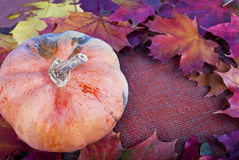 Autumn border from  pumpkin and colorful autumn leaves on the ca Stock Photo