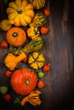 Autumn border with pumpkins and copy space Royalty Free Stock Photo
