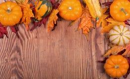 Autumn Border Stock Photo