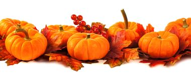 Autumn border Royalty Free Stock Image