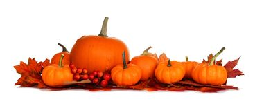 Autumn border of pumpkins and fall leaves isolated on white Royalty Free Stock Photo