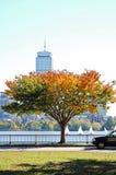Autumn in Boston Royalty Free Stock Image
