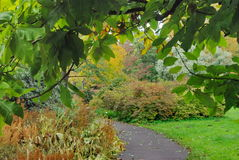 Autumn in the botanical garden. Autumn in the Riga Botanical Garden stock photo