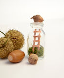 Autumn in  a bottle Royalty Free Stock Photo