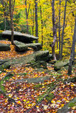 Autumn Boulders Royalty Free Stock Photography