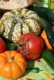 Autumn Bounty Royalty Free Stock Photo
