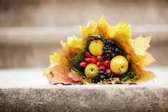 Free Autumn Bouquet Royalty Free Stock Photo - 24540465