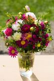 Autumn bouquet, autumn flowers, green background, birthday bouqu. Et, celebrations Royalty Free Stock Photography