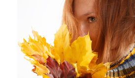 Autumn bouquet. Beautiful young woman in striped sweater holding bouquet of autumn leaves isolated on white background royalty free stock image