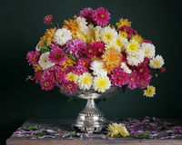 Autumn bouquet with chrysanthemums in iron vase on a dark backgr Stock Photo