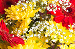 Autumn bouquet of flowers Royalty Free Stock Photo