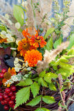 Autumn bouquet Stock Image