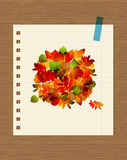 Autumn bouquet with leaf for your design Royalty Free Stock Photos