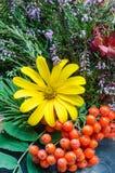 Autumn bouquet Stock Image
