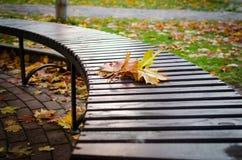 Autumn Bouquet olvidado Foto de archivo