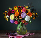 Autumn bouquet and plum on a dark background. Stock Photos