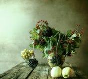 Autumn bouquet Still Life sprigs elderberry Stock Images