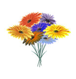 Autumn bouquet of wild flowers. stock photography